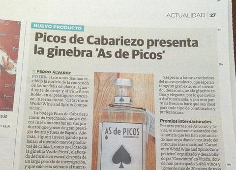 presentacion-gin-as-picos